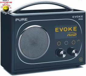 pure evoke flow dab radio