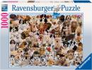 Dogs Galore 15 633 7 & Cats In The Garden Room 19 286 1 both from Ravensburger