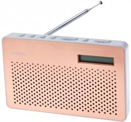 goodmans canvas DAB radio