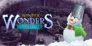 game Winter Wonders