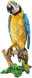 Hasbro Squakers Maccaw parrot