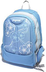 JanSport Recourse backpack blue
