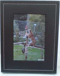 Parrot 7 inch BlueTooth picture frame